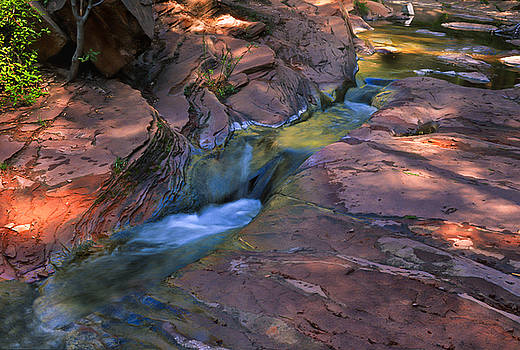 Sandra Bronstein - Oak Creek Canyon Splendor