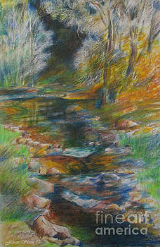Oak Creek Canyon Stream  by Jeanette Skeem