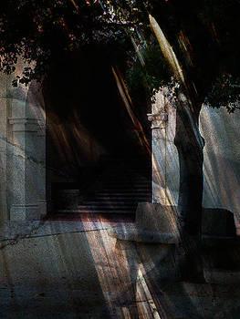 Oak Doorway by Marsha Tudor