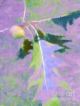 Oak by Julie Knapp
