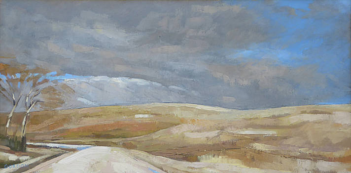 Oak Savanna, Fall Storm by Kim Gordon