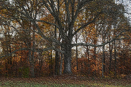 Embracing Autumn by Wanda Brandon