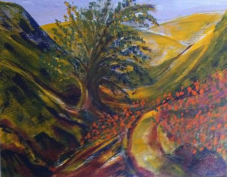 Oak Tree on Mt. Diablo by Darlene Van Meter