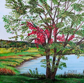 Oak Tree Standing by Marilyn McNish