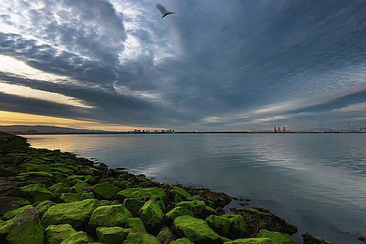Port of Oakland Sunrise by Daniel Danzig