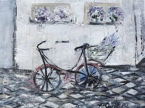 Oana's Bike by Evelina Popilian