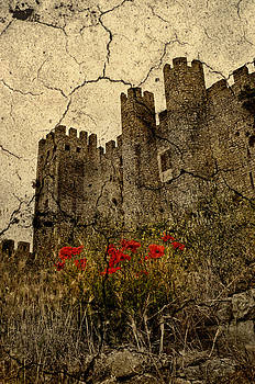 Obidos Castle by Gareth Davies