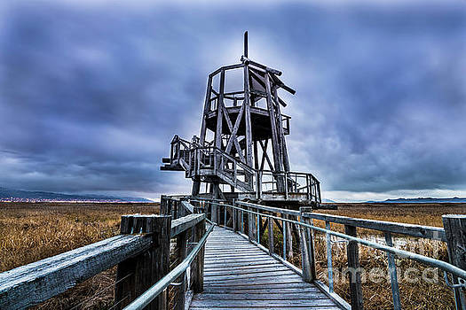 Observation Tower - Great Salt Lake Shorelands Preserve by Gary Whitton