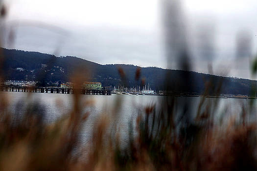 Obstructed View of Pier House at Pillar Point Harbor by Lon Casler Bixby