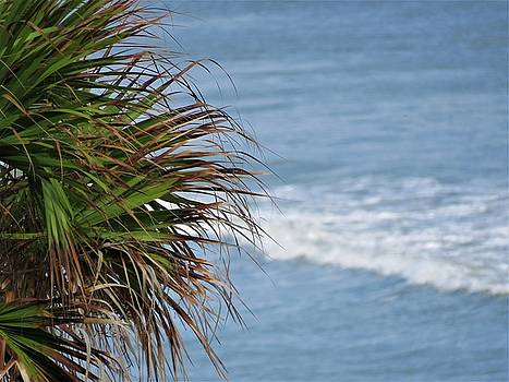 Ocean and Palm Leaves by Kathy Long