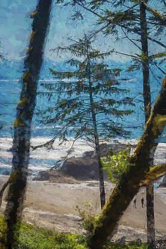 Mike Penney - Ocean Beach 1