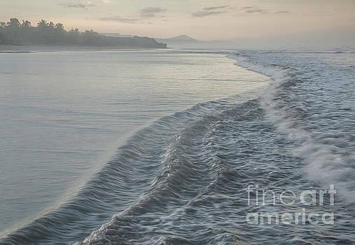 Ocean Blue by Iris Greenwell