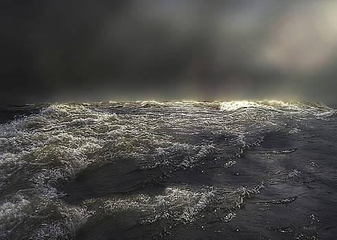 Ocean by Bob Orsillo