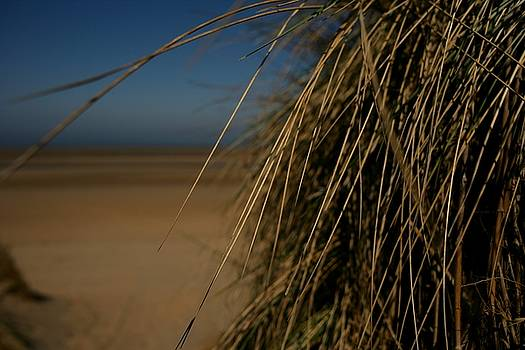 Ocean Breeze by Lens Artist