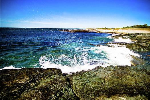 Ocean Drive by Susan Schumann