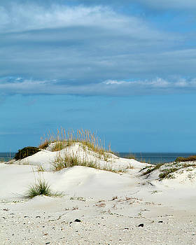 Ocean Dune by Brian Puyear