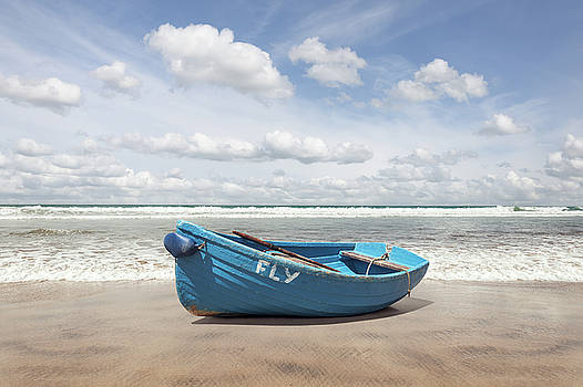 Ocean Eden by Ian David Soar