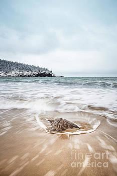 Evelina Kremsdorf - Ocean Flows