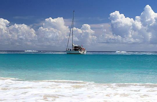 Ocean Fun In Vieques by Fiona Kennard
