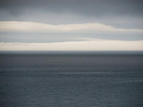 Ocean Horizon by Trance Blackman