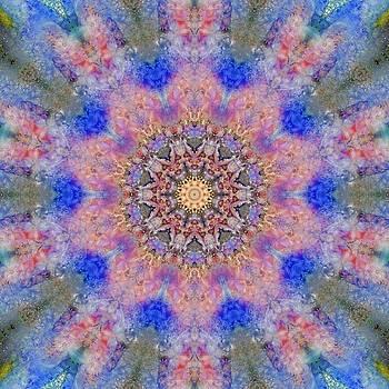 Ocean Kaleidoscope 1 by Natalie Rotman Cote
