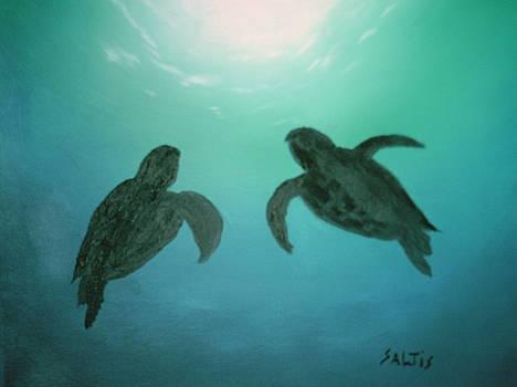Ocean Light by Jim Saltis