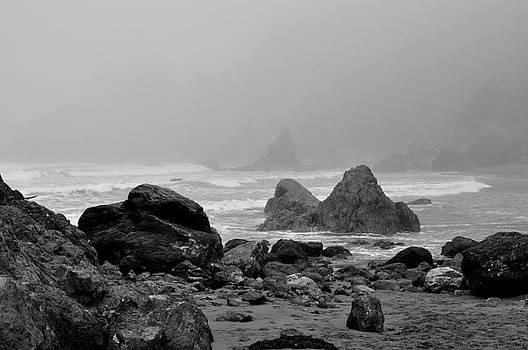 Ocean by Misty Achenbach