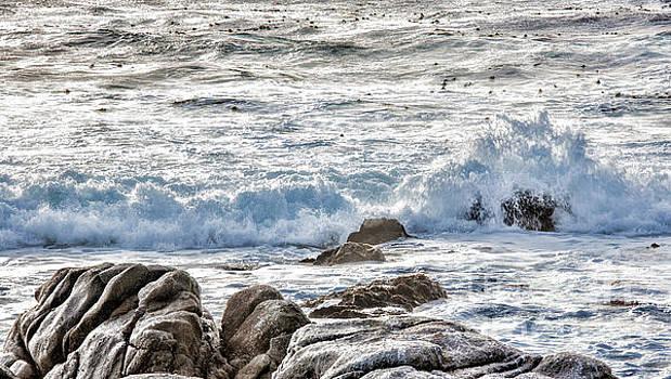 Chuck Kuhn - Ocean Pacific
