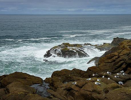 Ocean Peace by Susan Hamilton