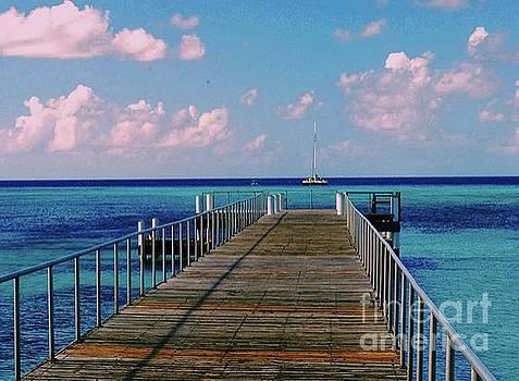 Gary Wonning - Ocean Pier