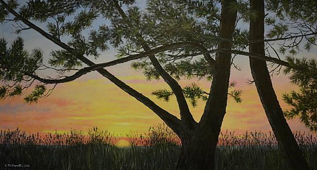 Ocean Pines by Kathleen McDermott