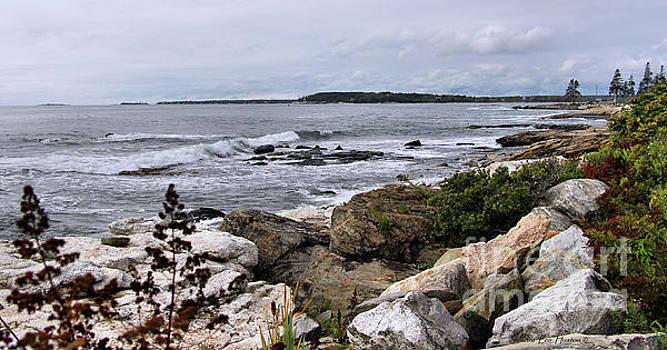Sandra Huston - Ocean Point View Panorama