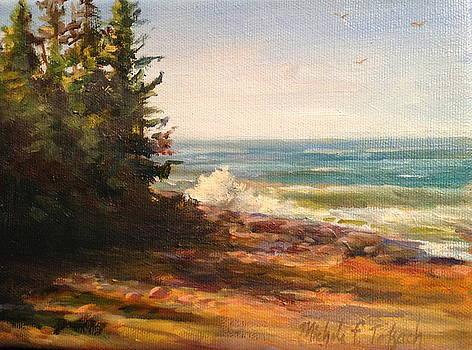 Ocean Scene in Maine by Michele Tokach