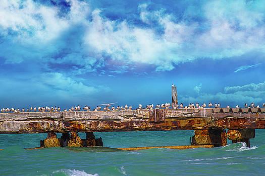 Ocean Seabreeze by Betsy Knapp