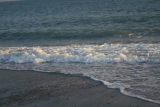 Ocean Shoreline by Susan Pedrini