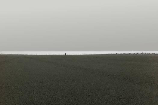 Marcello Cicchini - Ocean Shores