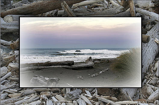 Ocean Shores  by Mary Gaines