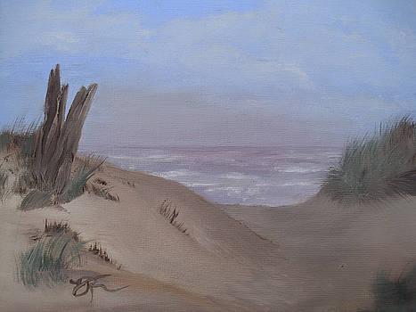 Ocean Side by Vickie Roche