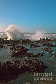 Ocean Spray by Billie-Jo Miller
