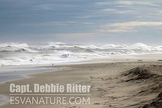 Ocean Storm 3871 by Captain Debbie Ritter