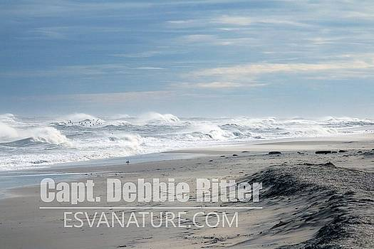 Ocean Storm 3878 by Captain Debbie Ritter