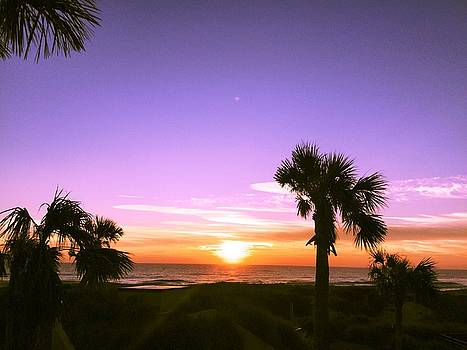 Ocean Sunrise at Amelia Island by Patricia Taylor
