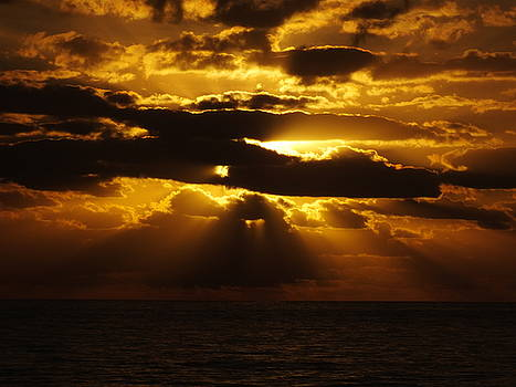 Cindy Treger - Pure Gold - Outer Banks Rodanthe, NC