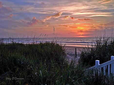 Ocean Sunrise Serenity by Joey OConnor