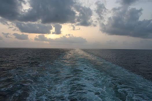 Ocean Sunset by Carolyn Ardolino