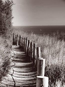 Ocean Trails  Palos Verdes California by Joe Schofield