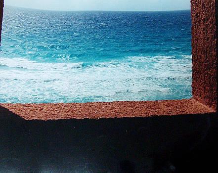 Ocean view by Danielle Bedard