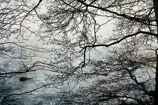 Ocean View by Randi Grace Nilsberg