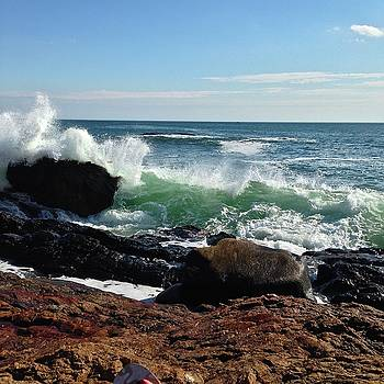 Ocean Waves  by Suzanne McDonald
