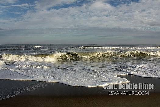 Ocean_0610_1072 by Captain Debbie Ritter